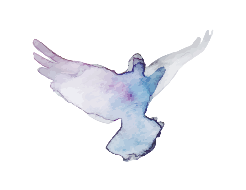 A stylized dove painted in pastel colours