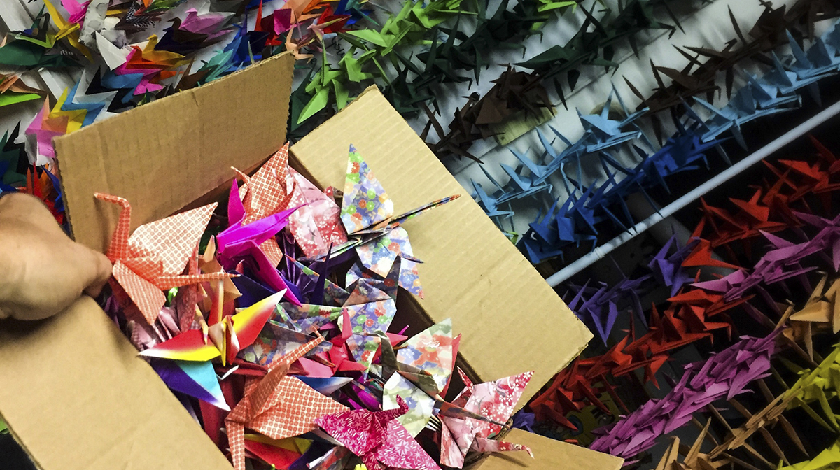 A cardboard box full of colourful origami cranes, with rows of cranes in the background.